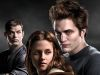 Photo for Twilight still sucks!