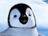 Photo for Heroes of the Zeroes: Happy Feet