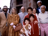 Photo for Heroes of the Zeroes: The Royal Tenenbaums