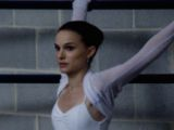 Photo for Black Swan