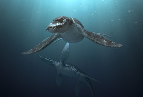 Sea Rex: Journey to a Prehistoric World