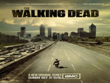 Photo for The Walking Dead