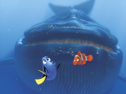 Finding Nemo inside