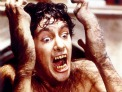 Photo for An American Werewolf in London (1981)