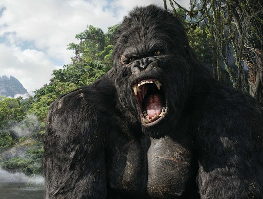King Kong is getting a new movie.